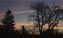ciel fin de journée, traces d'avions